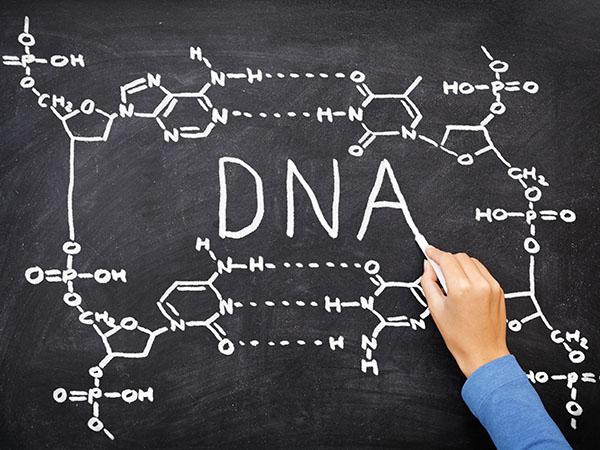 包皮过长是遗传引起的吗