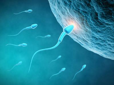 患前列腺炎会让男子不孕不育吗